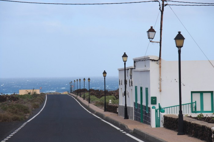Canaries_0751_1