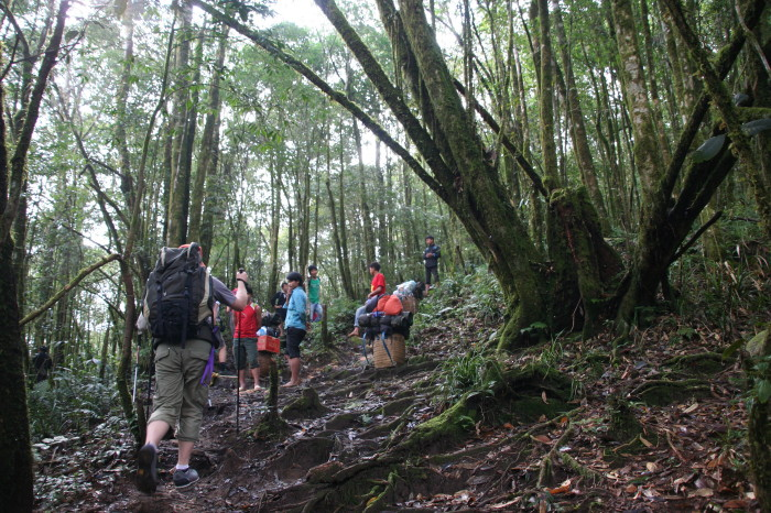 pat tClimbing Fansipan – highest peak of Indochina