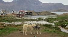 Greenland_20120817_0191