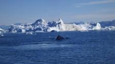 Greenland_20120819_0313