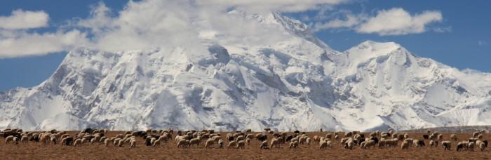 Tibet_4036_1