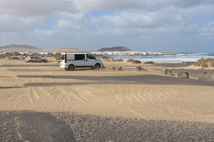 Canaries_0620_1