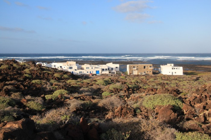 Canaries_0785_1