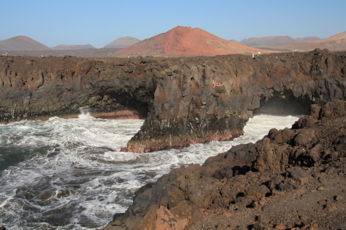 Canaries_1160_1