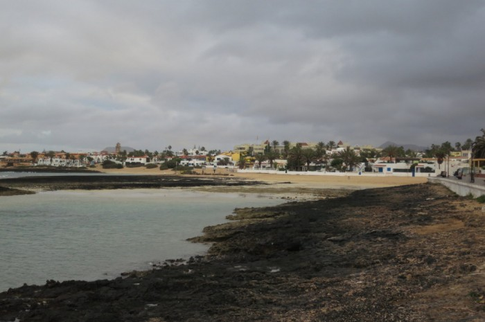 Canaries_0415