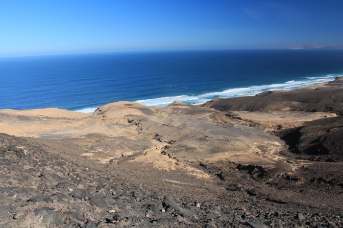 Canaries_1781
