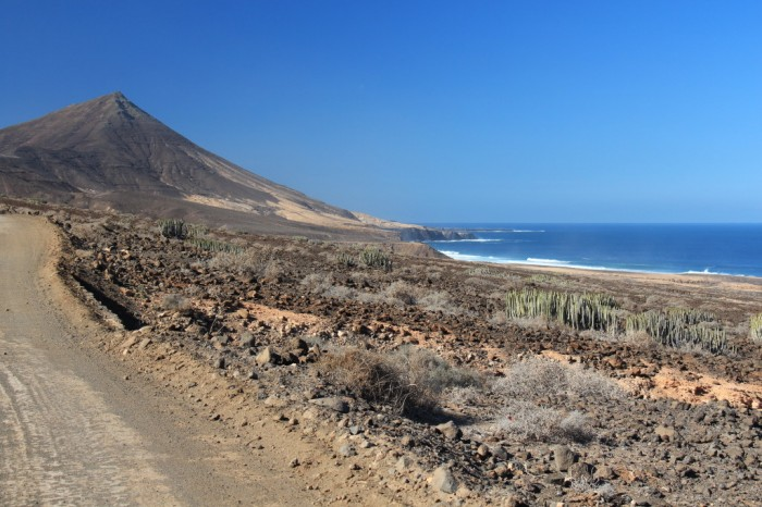 Canaries_1793