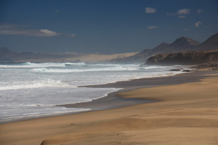 Canaries_1839