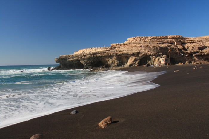 Canaries_2142