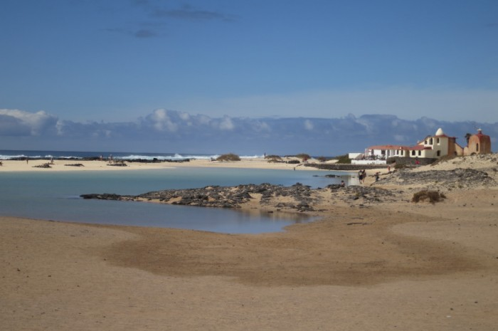Canaries_2266