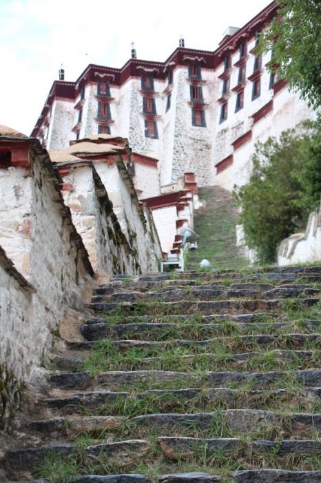 Tibet_0573