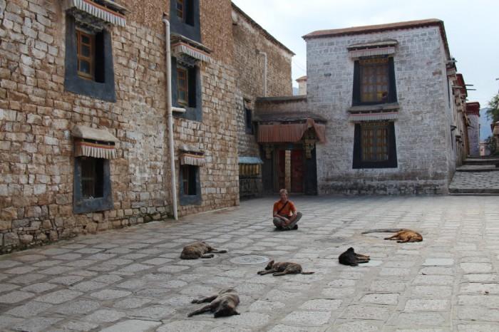 Tibet_0826