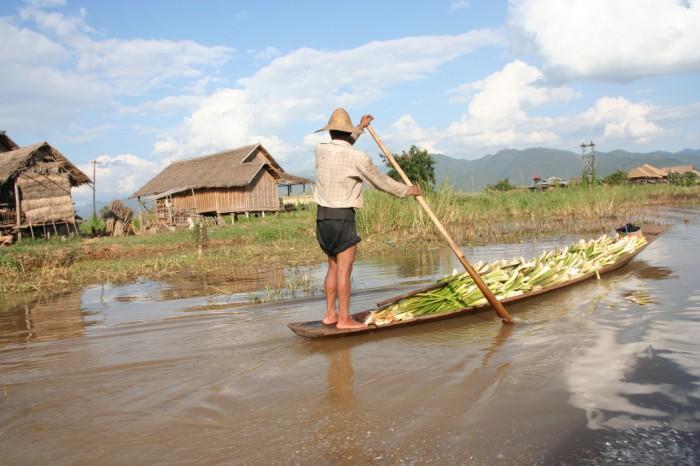 Myanmar_20101116_2472