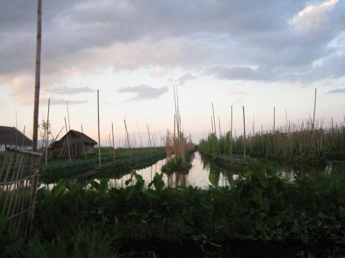 Myanmar_20101116_2585