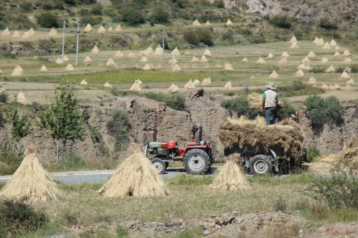 Tibet_1310e