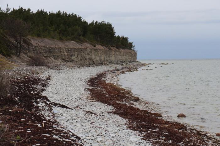 Saaremaa_254