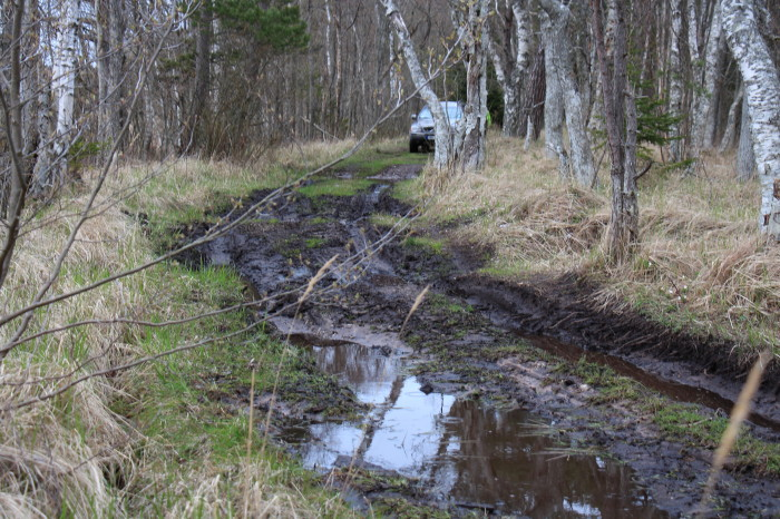 Saaremaa_309