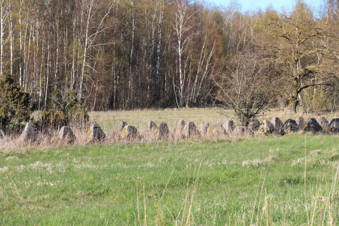 Saaremaa_454