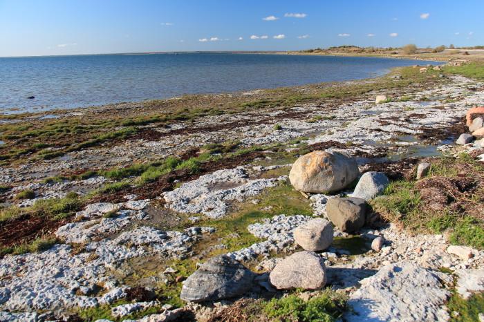 Saaremaa_461