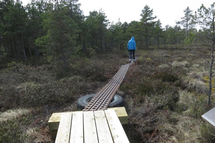 Saaremaa_535