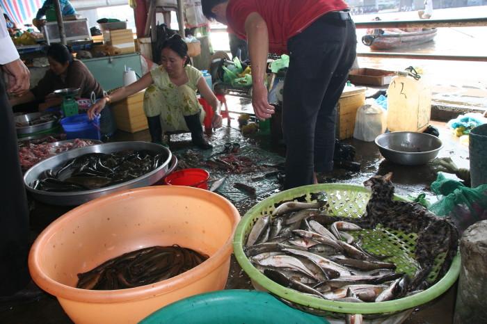 Vietnam11_0260